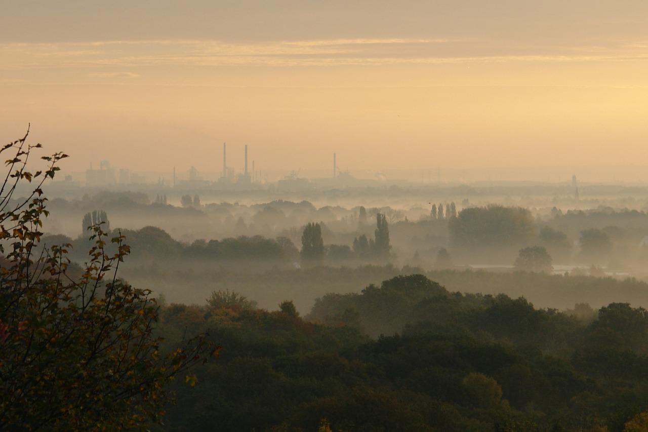 smog miasto